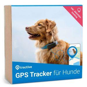 gps halsband hund